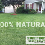 100% all natural weed control