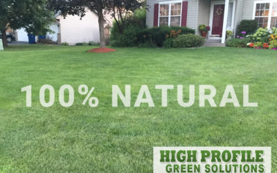 High Profile Green Offers an All-natural Alternative