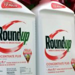 Round Up products weed killer - natural alternative